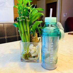 Starbucks Water Bottle